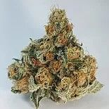 AAAA+ In-House Organic Animal Mints- SOLD OUT Flower Sativa