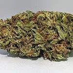 AAA In-House Organic Ghost OG Cookies- SOLD OUT Flower Hybrid